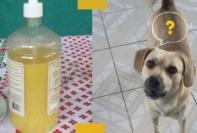 Repelente de xixi de cachorro e gato